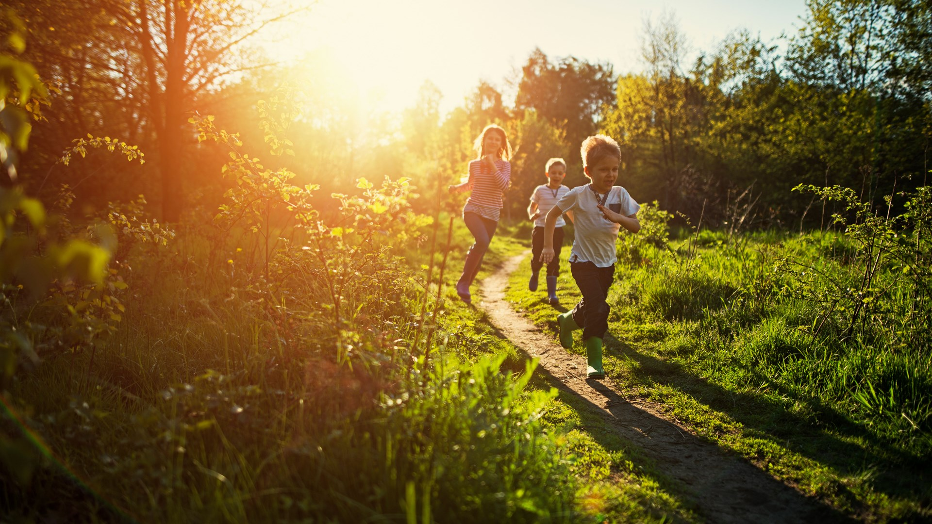 A young girl and two young boys running through a path in the sunshine
